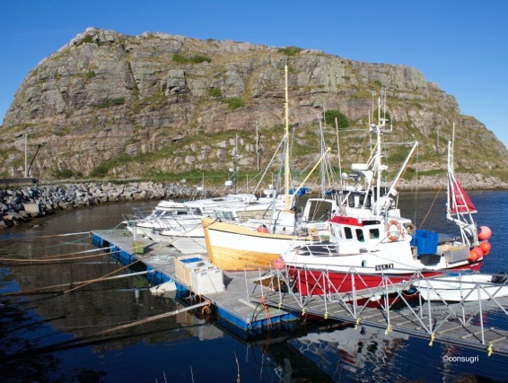 Fishing culture in Træna. Photo: C.Griggio